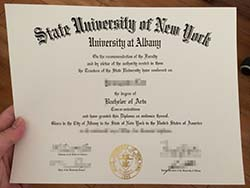 How to Buy Fake State University of New York at Albany Diploma