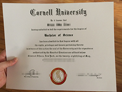 How to Purchase Fake Cornell University Diploma Certificate