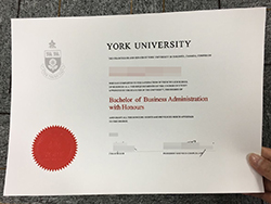 Where to Purchase York University Fake Degree Certificate