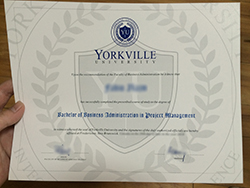 How To Buy Yorkville University Diploma, Fake Canadian Master Degree