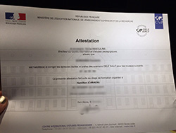 Buy Fake CIEP Certificate in France