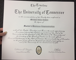 Where can I buy a Diploma in the University of Tennessee?