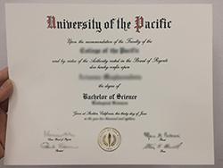 Why My University of the Pacific Fake Certificate Is Better Than Yours