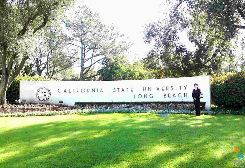 Which branch of California State University has more Chinese