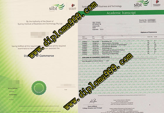 SIBT degree and transcript