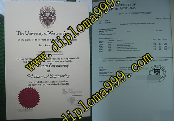 Fake University of Western Australia degree and transcript