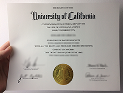 How to Buy Fake UCLA Diploma and Transcript