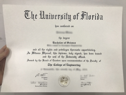 Are You Looking For University of Florida (UFL) Fake Diploma Degree