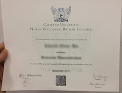 How to Buy Fake Capilano University Diploma Certificate