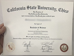 Where to Sell Fake California State University, Chico Diploma Certificate