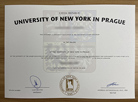 How Much to Order The University of New York in Prague Degree? UNYP Diploma.